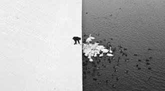 /Files/images/winter-contrast-in-krakow-poland-black-and-white.jpg